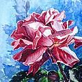 Rose by Zaira Dzhaubaeva