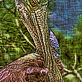 Roseate Spoonbill Art by Deborah Benoit