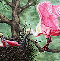 Roseate Spoonbill Nesters  by Ruth Bares