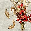 Rosehips And Grasses by Ann Garrett