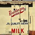 Rosenberger's - Dairy Milk  by Liane Wright