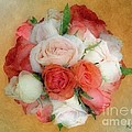 Roses Antiqua by RC DeWinter