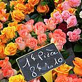 Roses At Flower Market by Brian Jannsen