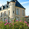 Roses At The Castle by Olivier Le Queinec
