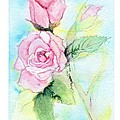 Roses by C Sitton