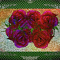 Roses- Featured In Beautiful Roses And Comfortable Art Groups by Ericamaxine Price