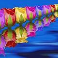 Roses Floating by Tom Mc Nemar