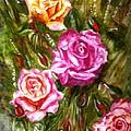 Roses by Harsh Malik