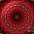 Roses Kaleidoscope Under Glass 12 by Rose Santuci-Sofranko
