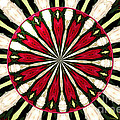 Roses Kaleidoscope Under Glass 17 by Rose Santuci-Sofranko