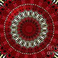 Roses Kaleidoscope Under Glass 18 by Rose Santuci-Sofranko