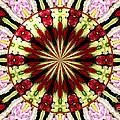 Roses Kaleidoscope Under Glass 25 by Rose Santuci-Sofranko