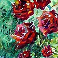 Roses by Mindy Newman