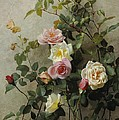 Roses On A Wall by George Cochran Lambdin