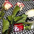 Roses From Rosa... by Rebecca Dru