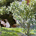 Roses by Peder Severin Kroyer