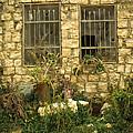 Rosh Pina Windows by Daniel Blatt