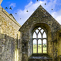 Ross Errilly Friary - Irish Monastic Ruins by Mark E Tisdale