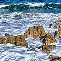 Ross Witham Beach Stuart Florida by Olga Hamilton