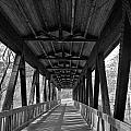 Roswell Bridge 1 by Denise Mazzocco