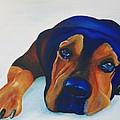 Rottweiler by Catt Kyriacou