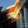 Rotunda At The University Of Virginia by Jason O Watson
