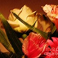 Rough Pastel Flowers - Award-winning Photograph by Gerlinde Keating - Galleria GK Keating Associates Inc