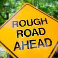 Rough Road Ahead by Ed Weidman