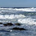 Rough Seas by Barbara Snyder