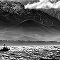 Rough Seas Kaikoura New Zealand In Black And White by Amanda Stadther