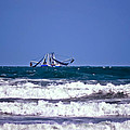 Rough Seas Shrimping by DigiArt Diaries by Vicky B Fuller
