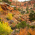 Rough Terrain In Autumn Along Zion-mount Carmel Highway In Zion Np-ut by Ruth Hager