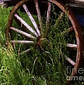 Round And Rusty by RC DeWinter