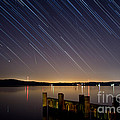 Round Bay Startrails And A Meteor Shower by Benjamin Reed