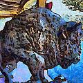 Round Up Market Buffalo by Barbara Snyder