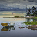 Row Boat By Mount Desert Island by Randall Nyhof