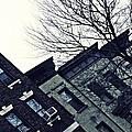 Row Houses In Washington Heights by Sarah Loft