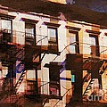 Row Houses - Old Buildings And Architecture Of New York City by Miriam Danar