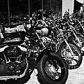 Row Of Harley Davidson Motorbikes Including Sportster Outside Motorcycle Dealership Orlando Florida  by Joe Fox