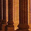 Row Of Large Columns by Don Hammond