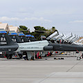Row Of T-38c Trainer Jets At Nellis Air by Riccardo Niccoli