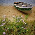 Rowboat And Asters by Frank Tozier