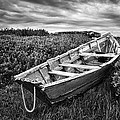 Rowboat At Prospect Point - Black And White by Nikolyn McDonald