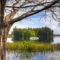Rowboats At The Lake by Debra and Dave Vanderlaan