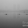 Rowers On The Lake by Dean Harte