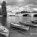 Rowing Boats by Julia Gavin