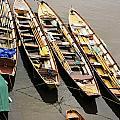 Rowing Boats by Maj Seda