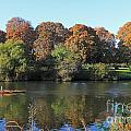 Rowing On The River Thames At Hampton Court London by Julia Gavin