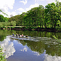 Rowing Practice - Near Branston by Rod Johnson