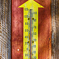 Royal Crown Barn Thermometer by Carolyn Marshall